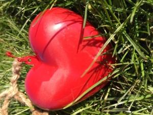 valentijnsdag farmsurvival